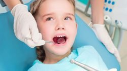 Talking About Dental Education with Preschoolers